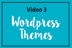 Video 3: WordPress Themes